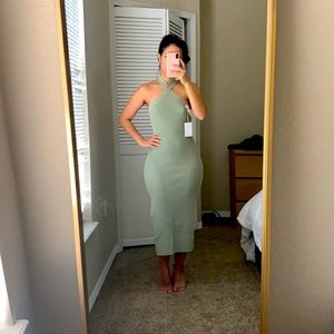 Aritzia Cayenne Dress
